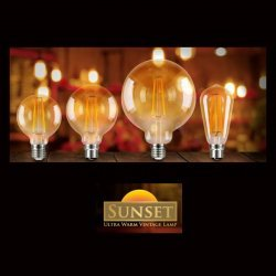 Vintage Decorative LED Lamp bulbs